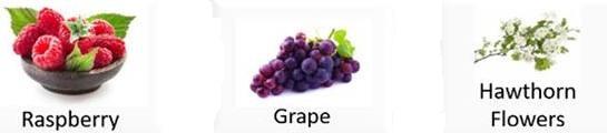 aplgo hrt heart health ingredients 1